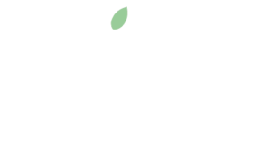 Mint Creatives logo cropped