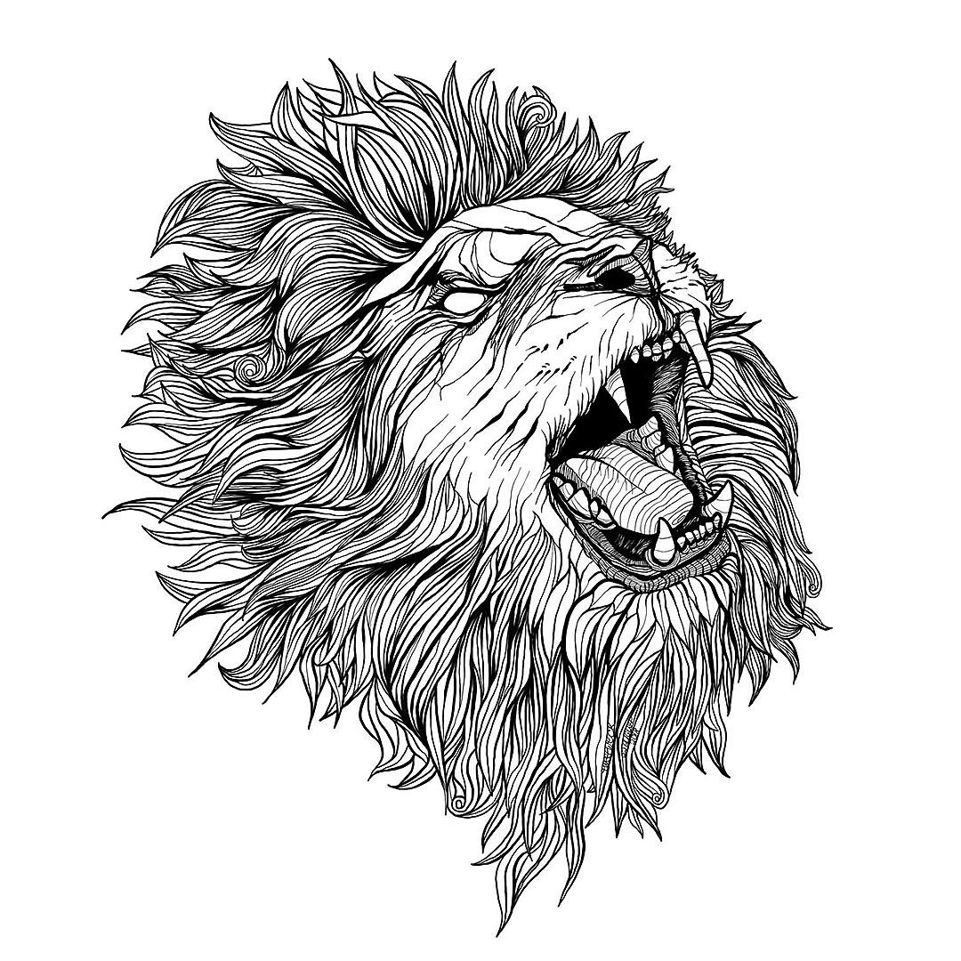 Pen Illustration - Lion Roar